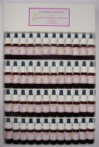 Complete set bloesem remedies BRN - 48 stockflesjes 10 ml.