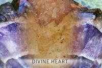 Bloesem remedie Divine Heart